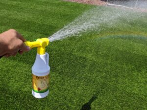 This is a picture of our Urine Luck Synthetic Turf Cleaner in action